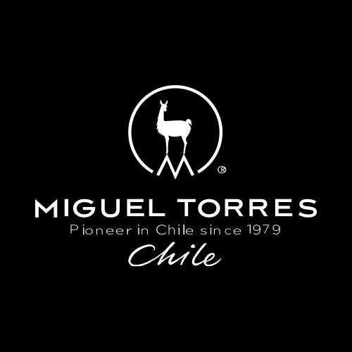 Image result for Miguel Torres, Chile